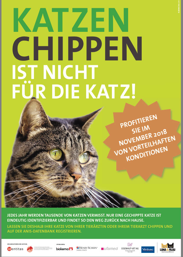 Katzen chippen - Aktion November 2018